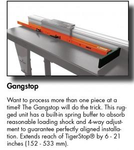 Gangstop TS-01